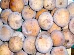 picture of dukong fruit found in malaysia