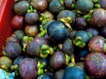 picture of mangosteen in malaysia