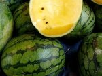 picture of yellow watermelon in malaysia