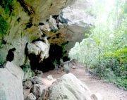 jebak puyuh caves