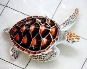 photo of a green turtle