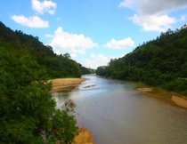picture of malaysian river