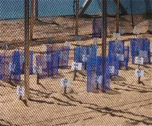 picture of incubators in the sand for turtle eggs