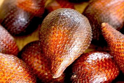 picture of malaysian snakefruit (buah salak)