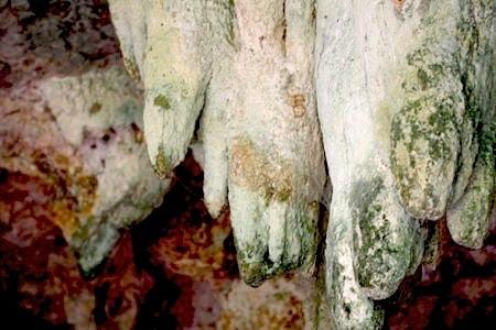 jebak puyuh cave entrance