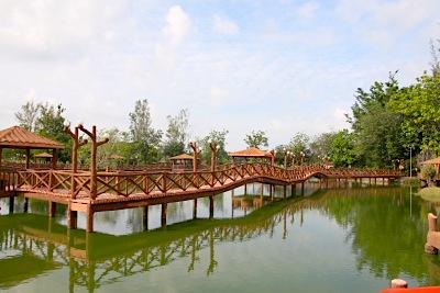 boardwalk at tasik melati in perlis, malaysia
