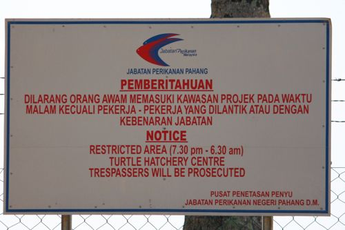 prohibition signboard on the beach at turtle sanctuary center